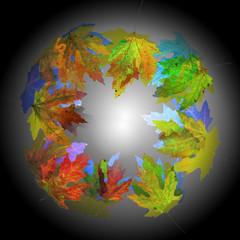 Mandala di foglie multicolori