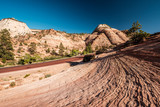 Landscape in Zion National Park - 213337248
