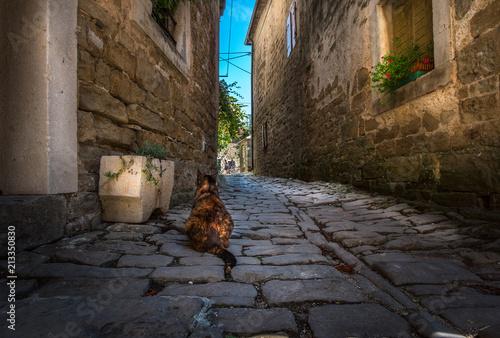 Fototapeta The streets of the city of Porec. Croatia.