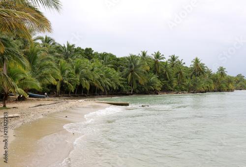 Fotobehang Tropical strand Beautiful beach, lined with lush palm trees on Bocas del Toro island, Panama