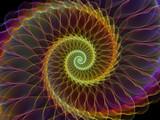 Spiral Vortex - 213423840