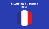 La france championne du monde de football 2018 - 213424292