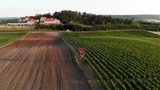 Wooden tower in the middle of a vineyard - 213428669