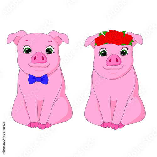 vector illustration pig, new year, christmas