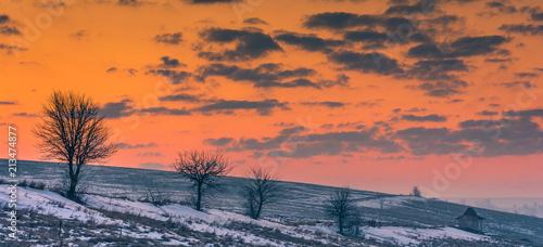 Canvas Oranje eclat Fields in winter