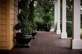 Big front porch with greenery.  - 213503014
