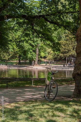 Beautiful Volksgarten Park in Cologne