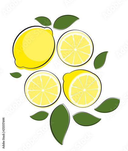 Abstract Lemon Natural Background Vector Illustration - 213517644