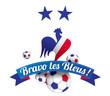 BRAVO LES BLEUS AVEC 2 ÉTOILES (les copieurs: guillaume_photo et Séverine MARTIN)