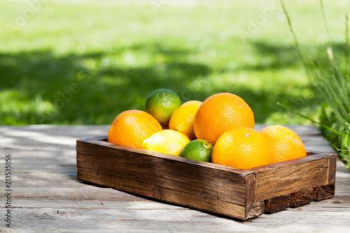 Fresh summer fruits - 213535056