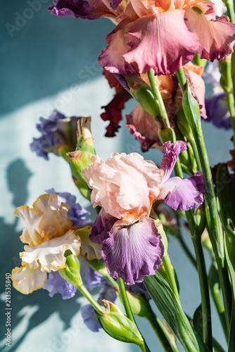 Fotobehang Iris Bunch of coloful fresh irises