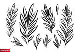 Vector set of ink drawing wild plants, herbs, monochrome artistic botanical illustration, isolated floral elements, hand drawn illustration. - 213556637