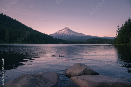Aluminium Lavendel Mt Hood watches over two ducks passing by the lake during sunset