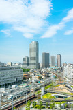 Asia Business concept for real estate and corporate construction - panoramic modern city urban skyline bird eye aerial view under sun & blue sky in Tokyo, Japan - 213598088