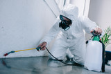 pest control worker spraying pesticides on floor at home - 213598260