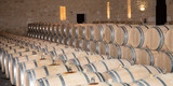 large vineyard winery with oak barrel - 213599607