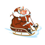 Pig Santa is racing on a sledge with gifts/Colorful Christmas greeting card in vector with symbol of New Year in vector - 213600649