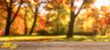 Leinwandbild Motiv herbstbäume mit fallendem laub
