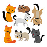 cat vector collection design - 213635264