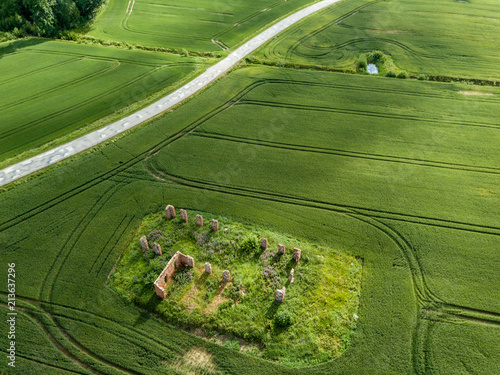 Fotobehang Groene drone image. aerial view of rural area with green cultivated fields and old abandoned building ruins in the middle