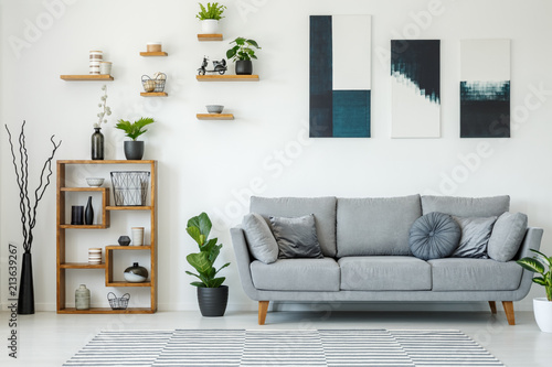 Elegant living room interior with a grey sofa, wooden shelves, plants and paintings on the wall © Photographee.eu