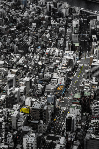Canvas Tokio Streets of Tokyo from the Tokyo Skytree in fading colours