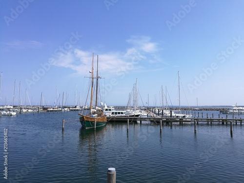 Foto Murales Segelboote wohin man schaut