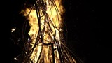Slow motion upward shot of bonfire blaze with burning branches falling and culminating in massive spark release - 213675449
