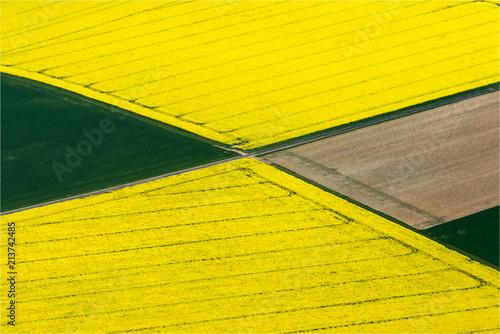 Foto Spatwand Zwavel geel vue aérienne de champs de colza près d'Escarpin en Eure-et-Loir en France