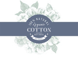 cotton emblem over hand drawn cotton branches - 213751696