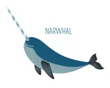 Narwhal with sharp horn childish book character