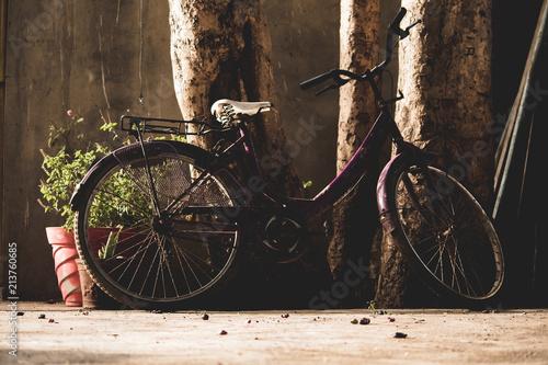 Foto Spatwand Fiets Bicycle
