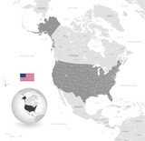 Grey Vector Political Map of the USA