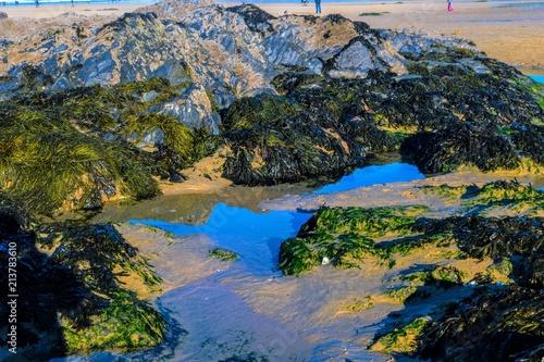 Fotobehang Zwart Pools of water at Fistral Beach, Newquay, Cornwall