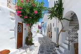 Fototapeta Uliczki - Traditionelle weiße Gasse mit bunten Oleander Blumen und farbigen Türen auf den Kykladen in Parikia, Paros, im Sommer, Griechenland © moofushi