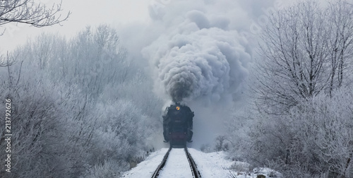 steam locomotive with steam clouds in winter, front view, Slovakia - 213792626