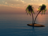 palms on the island against the sunset - 213807298