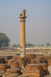 Ashoka pillar at Kutagarasala Vihara, Vaishali, Bihar, India.