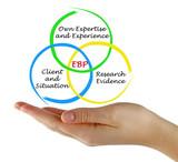 Evidence based practice (EBP) - 213841680