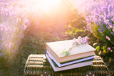 Picnic basket, old books under the rays of the setting sun. Romantic picnic concept at sunset in a fragrant lavender field. - 213853459