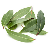Aromatic bay leaves - 213856044