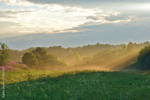 Sun rays illuminating the meadow. Nature landscape. Novgorod region, Russia. - 213867645
