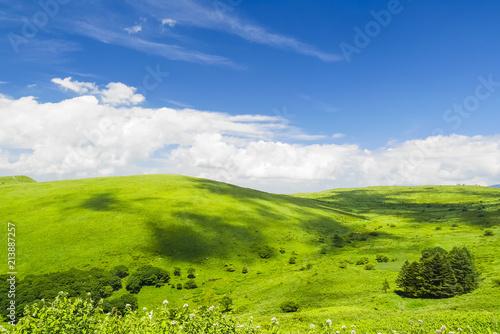 草原に映る雲