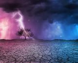 Lightning strike a tree - 213918448