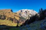 Österreich - Tirol - Großer Ahornboden - 213924047