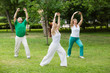 Leinwanddruck Bild - group of people practice Tai Chi Chuan in a park.  Chinese management skill Qi's energy.