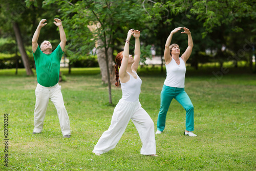 Leinwanddruck Bild group of people practice Tai Chi Chuan in a park.  Chinese management skill Qi's energy.