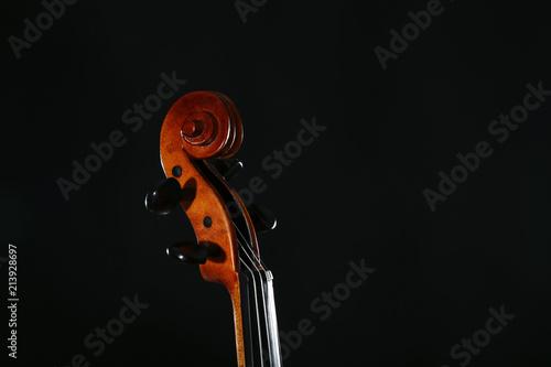 Foto Murales Violin head on black background