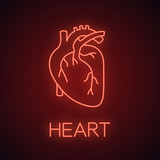 Human heart anatomy neon light icon - 213931826