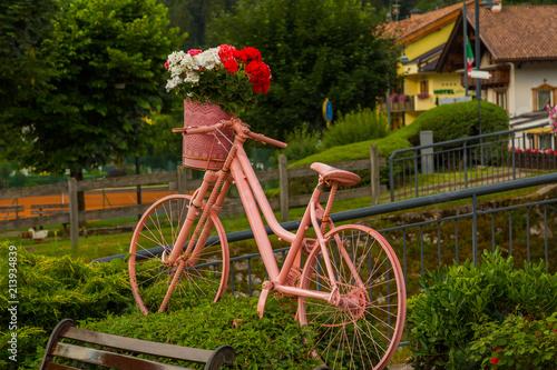Aluminium Fiets Pink bicycle, bike, in Malveno, Italy